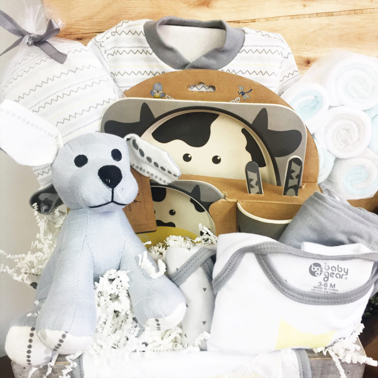 New Baby Gender Neutral Vancouver Gift Baskets